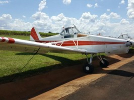 PA-25-260 PAWNEE - Foto 2