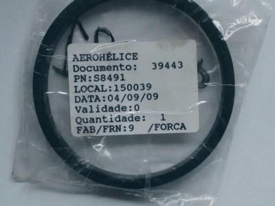 Detalhes da aeronave S8491